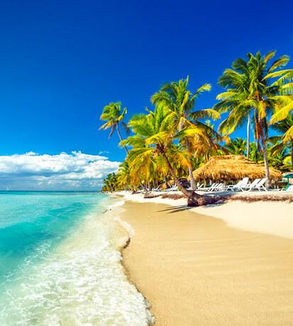 sunny caribbean beach